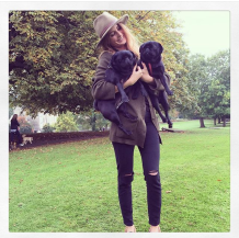 Millie Mackintosh Dogs Megan Fisher Freelance Journalist